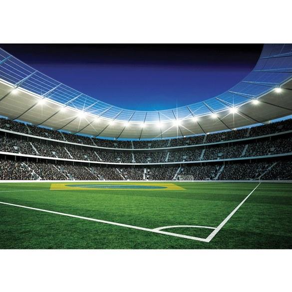 Mural no. 309 | Non-woven or Paper | football wallpaper soccer stadium