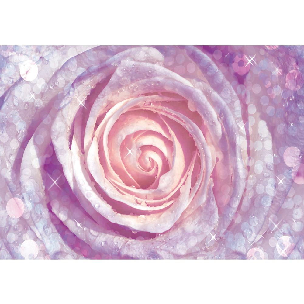 Fototapete no. 602 | Vlies | Blumen Tapete Rose Tropfen Blume Wasser rosa Motiv 0602