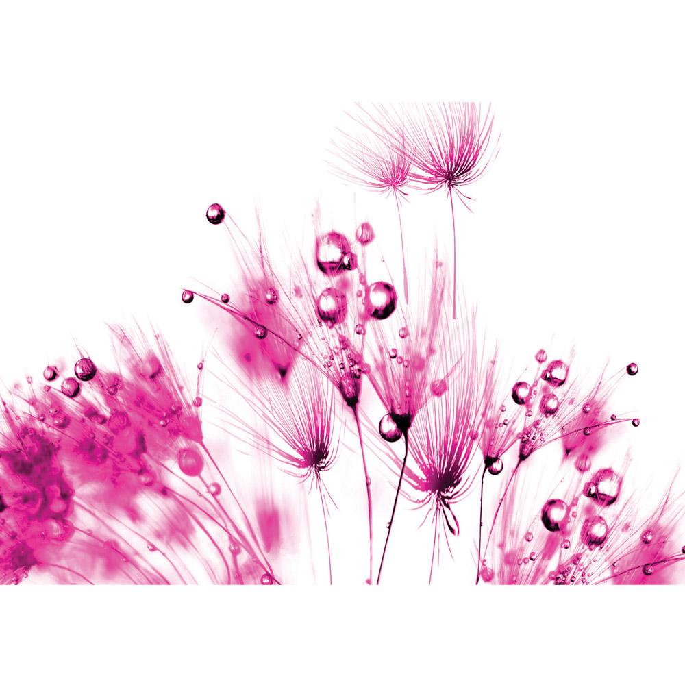 Fototapete no. 795 | Vlies | Blumen Tapete Pusteblume Regentropfen Tropfen Motiv 0795