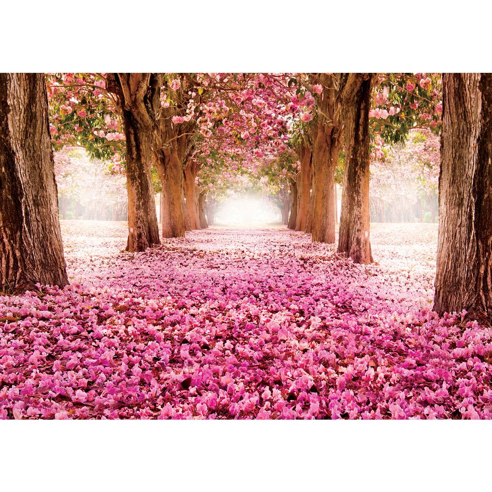 Fototapete no. 1572 | Vlies | Natur Tapete Allee Bäume Blüten rosa Motiv 1572