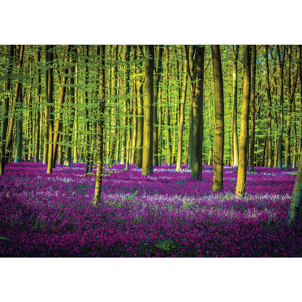 Fototapete no. 1598 | Vlies | Wald Tapete Bäume Blume Wiese lila Motiv 1597