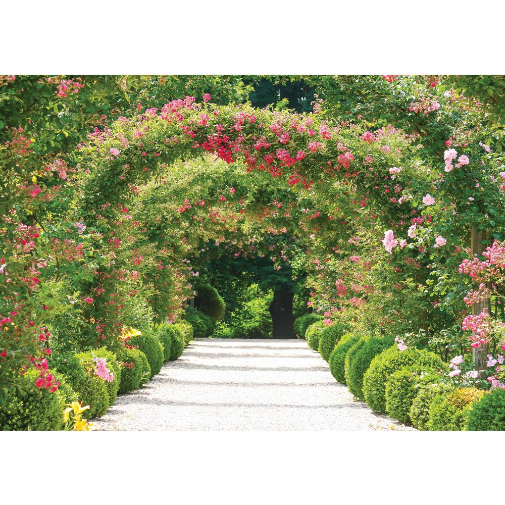 Fototapete no. 1746 | Vlies | Pflanzen Tapete Blumen Natur Weg grün Motiv 1746
