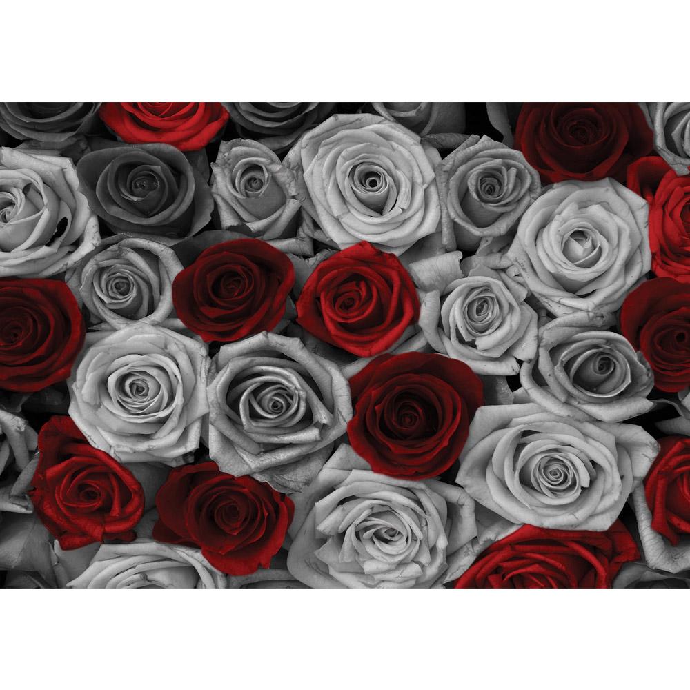 Fototapete no. 2409 | Vlies | Blumen Tapete Rosen Blume Blüte Pflanze Liebe Motiv 2409