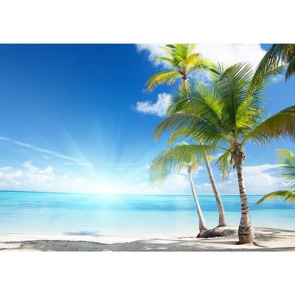 "Fototapete ""no. 2444"" | Vlies | Strand Tapete Palme Meer Wolken Sonne Schatten Motiv 2444"