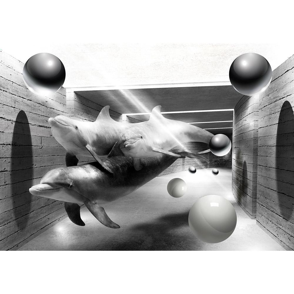 Fototapete no. 2685 | Vlies | Tiere Tapete Delphine Tunnel Wasser Bälle Kugeln Motiv 2685