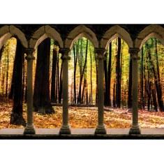 Fototapete no. 2801 | Vlies | Wald Tapete Säule Natur Laub Herbst Bäume braun Motiv 2801