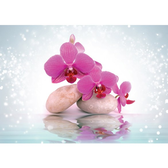 Mural no. 2817 | Non-woven or Paper | wellness wallpaper orchid stone