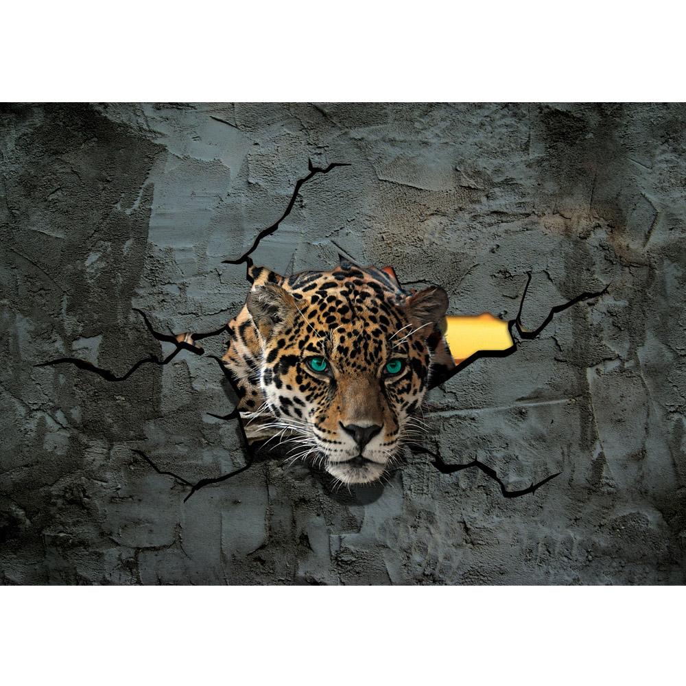 Fototapete no. 2861   Vlies   Tiere Tapete Leopard Augen Steinwand Steine Wand Motiv 2861