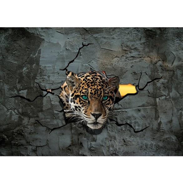 Fototapete no. 2861 | Vlies | Tiere Tapete Leopard Augen Steinwand Steine Wand Motiv 2861