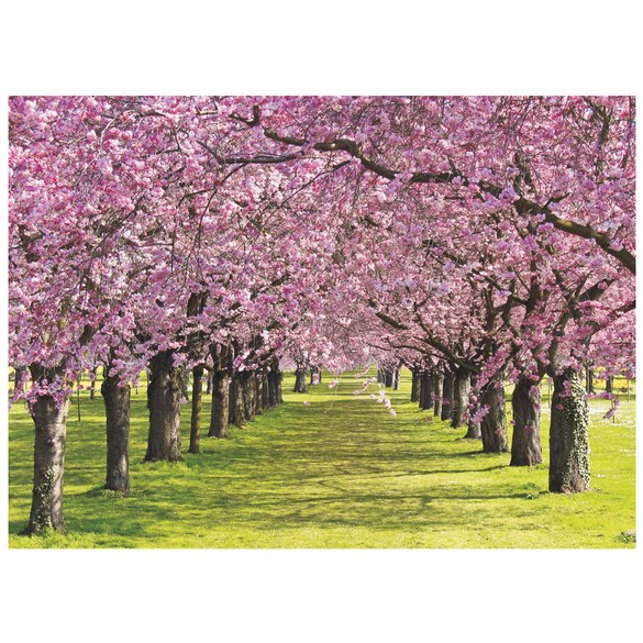 Mural no. 2950 | Non-woven or Paper | nature wallpaper trees flowers meadow