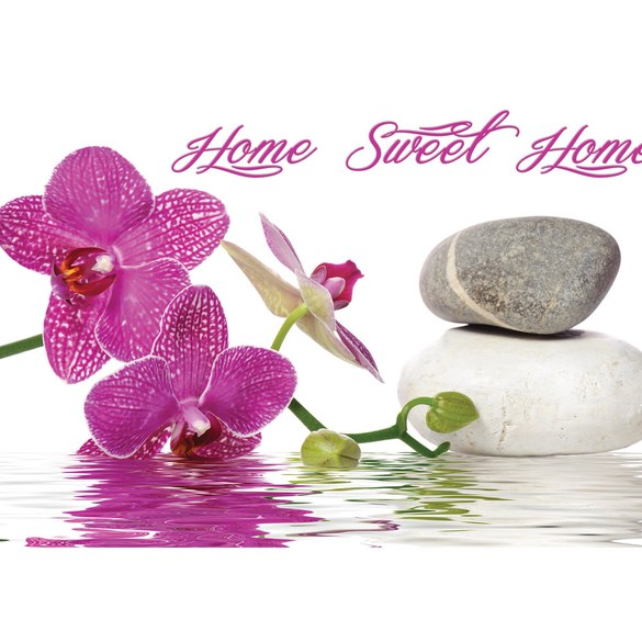 Mural no. 3164 | Non-woven or Paper | wellness wallpaper orchids stones