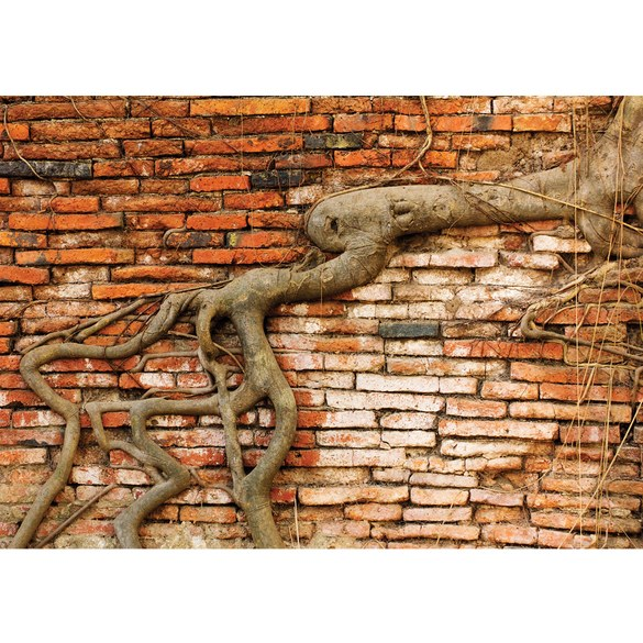 Mural no. 3289 | Non-woven or Paper | stone wall wallpaper brick wall