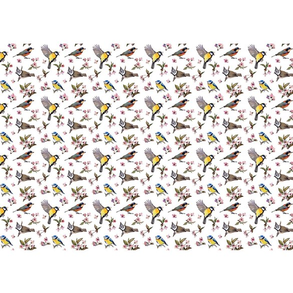 Mural no. 3310 | Non-woven or Paper | animals wallpaper tit great goldfinch