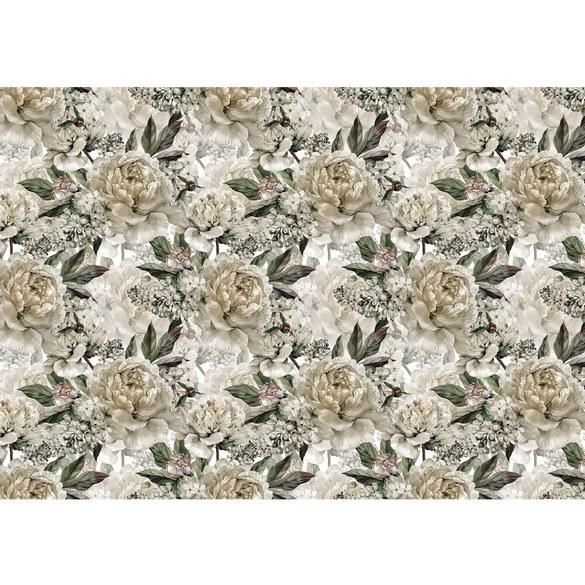 Fototapete no. 3549 | Vlies | Blumen Tapete Rosen, Blüten, Natur, groß weiß Motiv 3549
