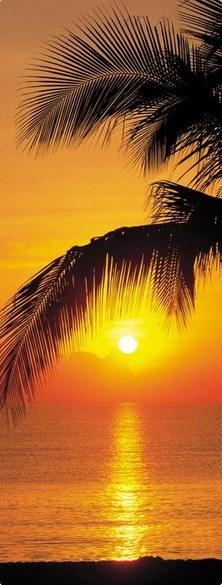 2-1255 Palmy Beach Türtapete