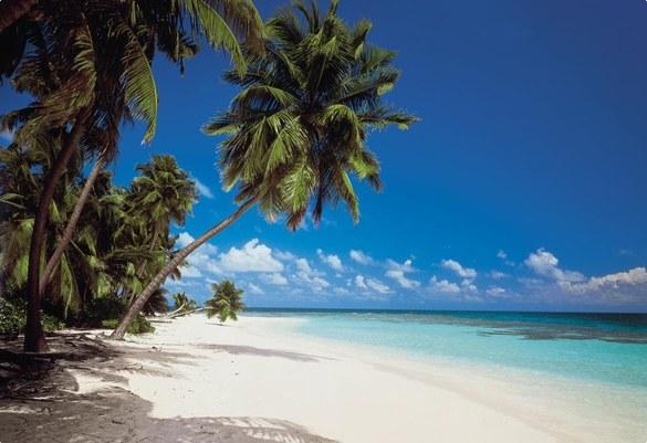 8-240 Malediven Fototapete