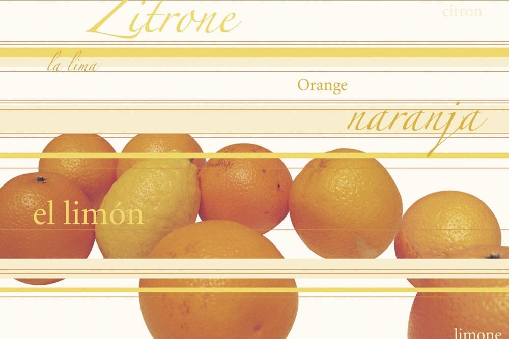 0331-8 Wandbild - Motiv: Zitrus