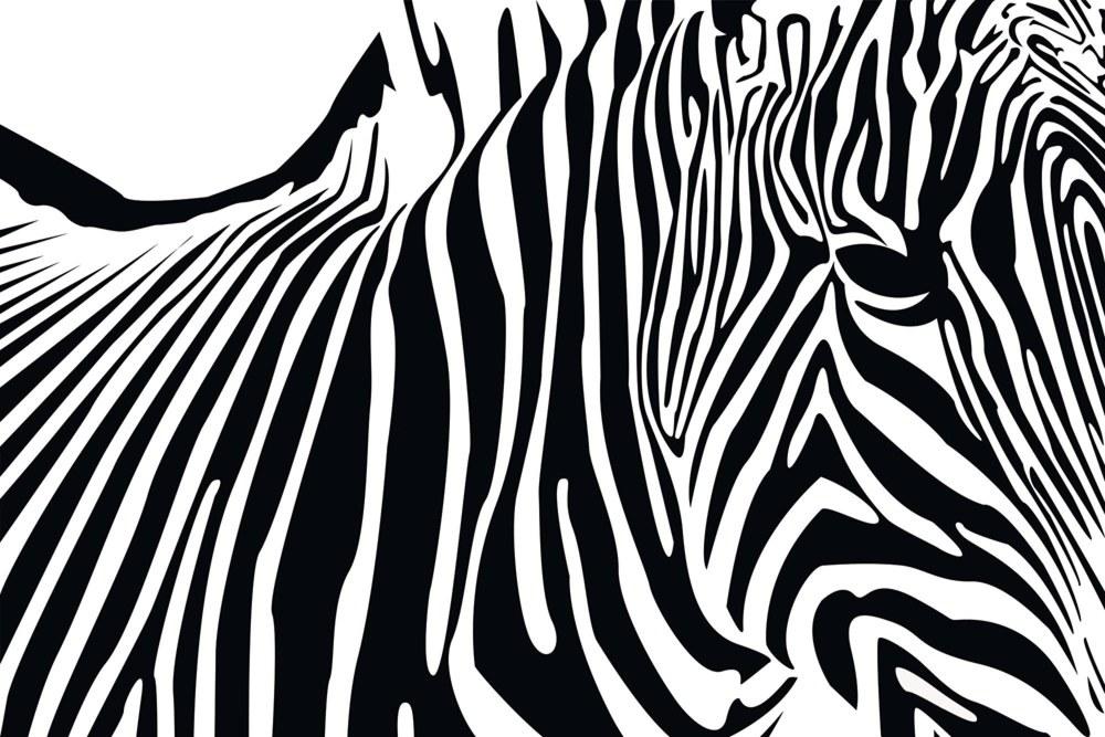 0364-3 Wandbild - Motiv: Zebra