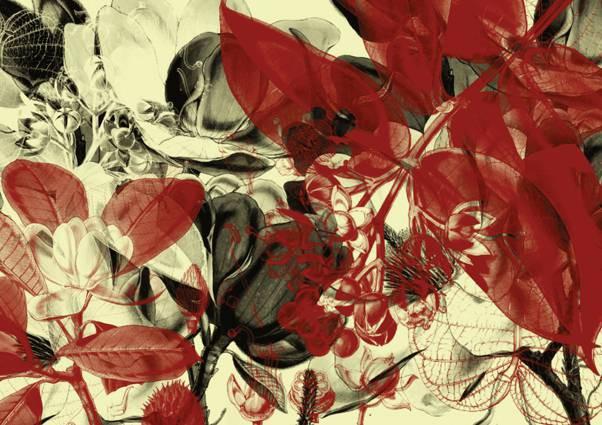 47-001 Wandbild - Motiv: Botanischer Garten