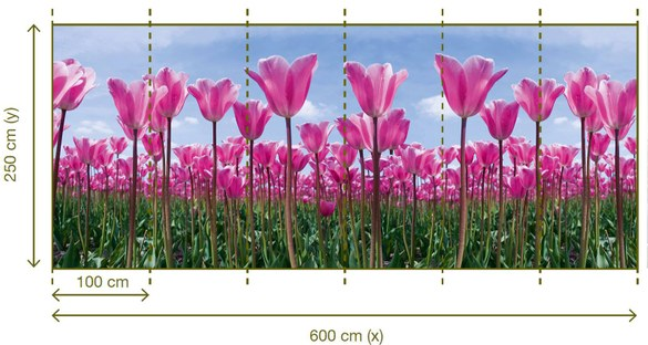 47-141 Wandbild - Motiv: Tulpen – Bild 3