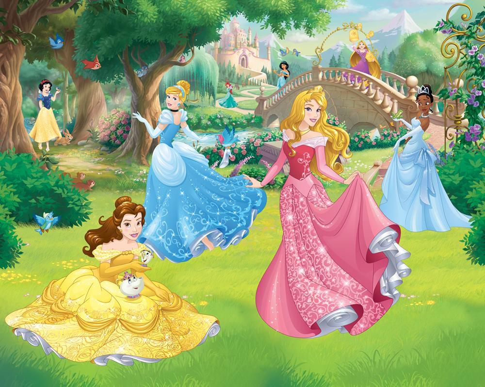 DW-43800 Disney Princess Fototapete