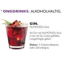 Acai Premium Energy Drink (12 x 250 ml) ohne chemische Zusätze inkl. 0,25 EUR Pfand Bild 6