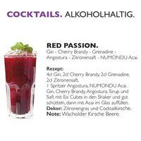 Acai Premium Energy Drink (24 x 250 ml) ohne chemische Zusätze inkl. 0,25 EUR Pfand Bild 5