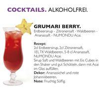 Acai Premium Energy Drink (48 x 250 ml) ohne chemische Zusätze inkl. 0,25 EUR Pfand 006
