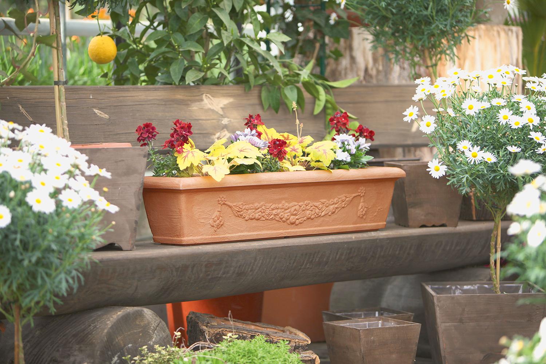 Blumenkasten Bergamo