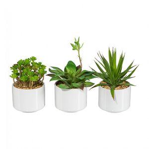 3-tlg. Sukkulenten-Set Kunstpflanze 16-20 cm in Keramikschale