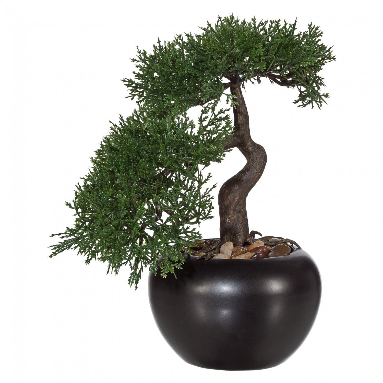 bonsai zeder kunstpflanze 25 cm in schwarzem keramiktopf. Black Bedroom Furniture Sets. Home Design Ideas