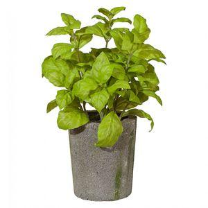 Basilikumbusch Kunstpflanze 23 cm im Zementtopf