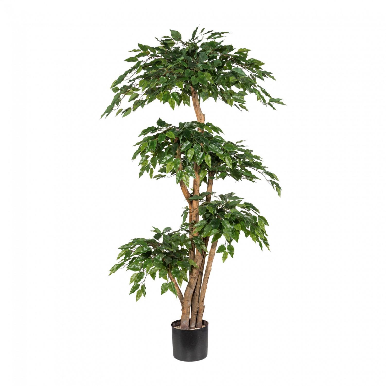 Dettagli su Ficus Benjamini Piante Artificiali 16 cm Con