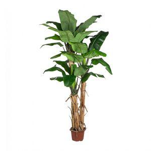Bananenpalme Kunstbaum 280 cm