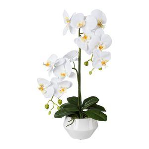 Künstliche Phalaenopsis im weißen Keramiktopf 52 cm in versch. Farben – Bild 2