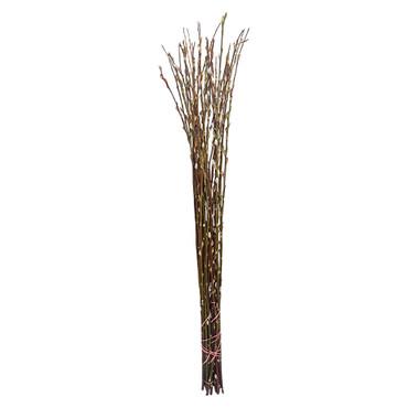 10 Extra lange Palmkätzchenzweige ca. 100 cm