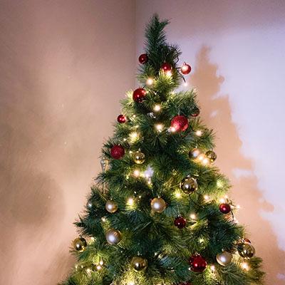 Wunderschöne Weihnachtsbäume für jeden Geschmack!