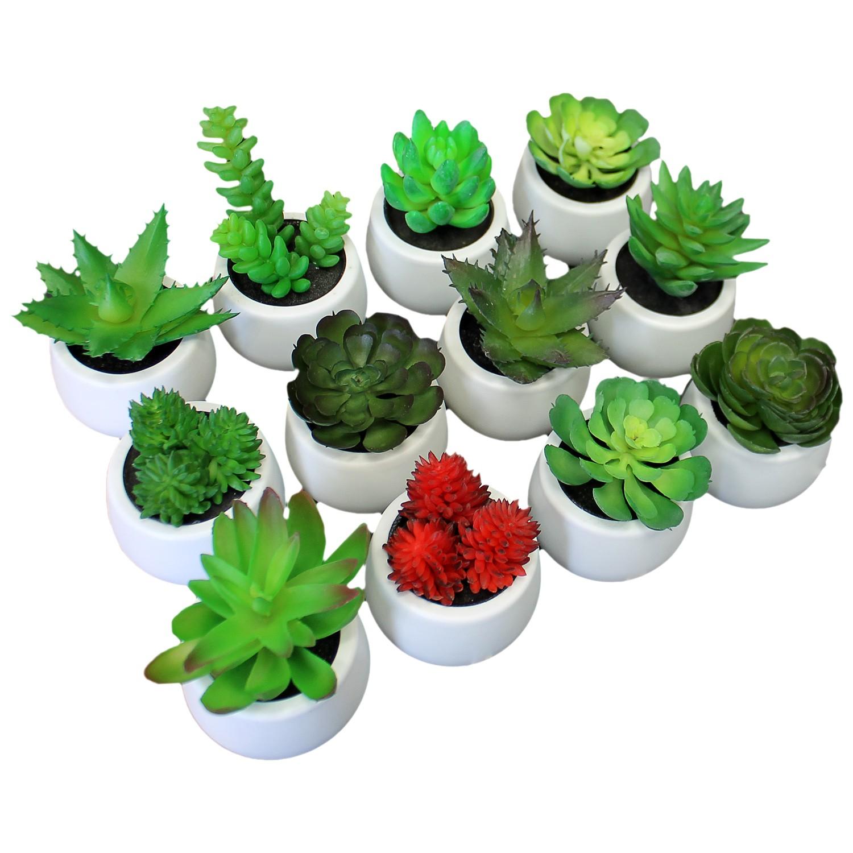 12tlg kunstpflanzen set sukkulenten 7x8 11cm wohnen for Wohnen dekoration