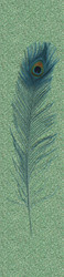 Harald Glööckler Designer Baroque Non-Woven Wallpaper 52724 - Peacock Feather - Green / Blue