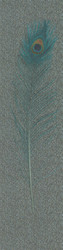 Harald Glööckler Designer Baroque Non-Woven Wallpaper 58507 - Peacock Feather - Gray / Green / Blue