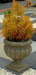 Casa Padrino Barock Blumentopf Ø 30 x H. 30 cm - kleiner runder Pflanzentopf im Barockstil - Blumenkübel - Pflanzkübel - Special!