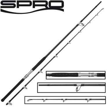 Spro Big Waller Monster Rod Wallerrute 3,20m 420g