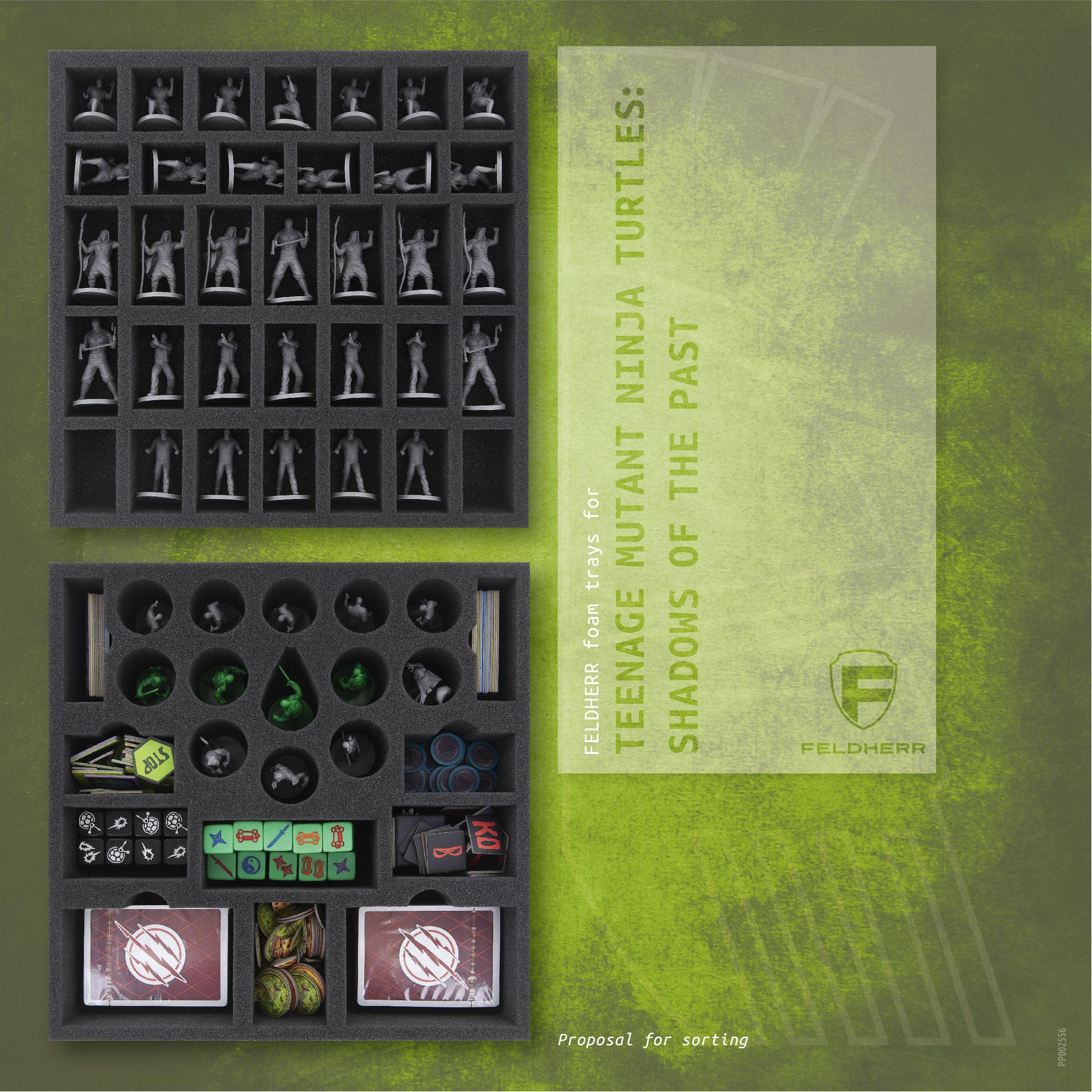 PP002556 - Flyer for Teenage Mutant Ninja Turtles: Shadows of the Past