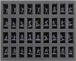 FS035BA02 Schaumstoffeinlage für Bolt Action – 36 Miniaturen