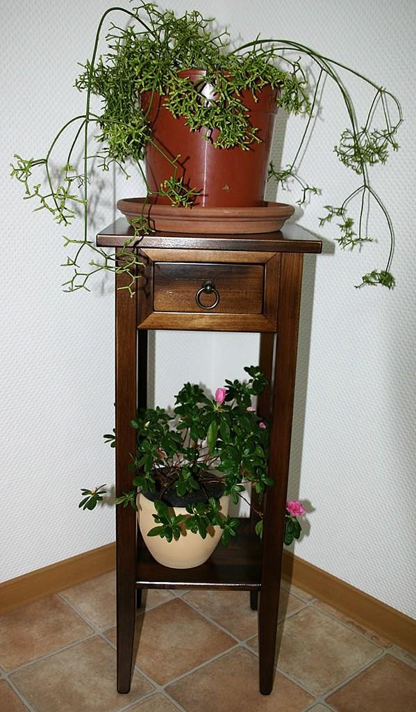 Beistelltisch Blumentisch Blumenhocker 80 Vollholz braun nussbaum Farbe massiv – Bild 3
