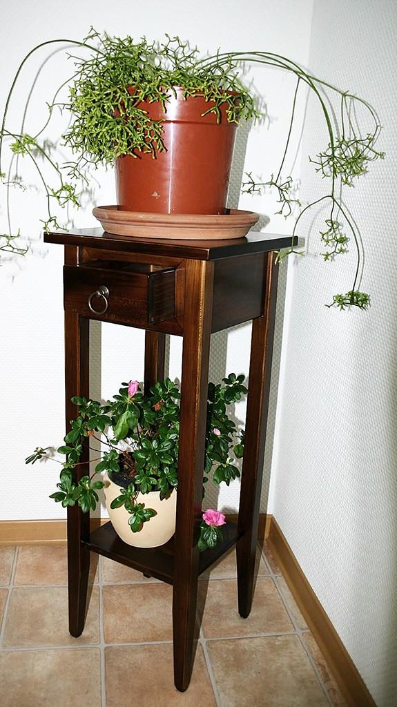 Beistelltisch Blumentisch Blumenhocker 80 Vollholz braun nussbaum Farbe massiv – Bild 4