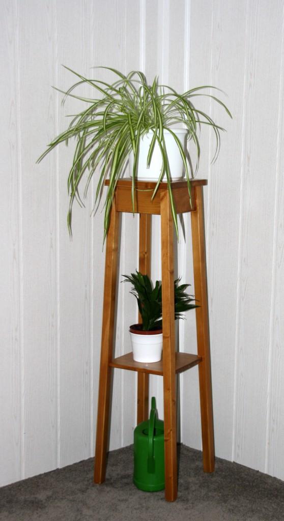 blumentisch 30x100x30cm fichte massiv honigfarben lackiert. Black Bedroom Furniture Sets. Home Design Ideas