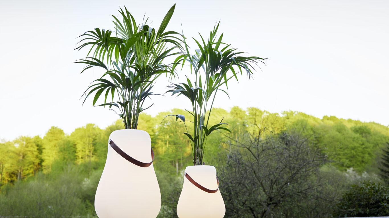 Zwei leuchtende Blumentöpfe mit Bäumen und Büschen im Hintergrund