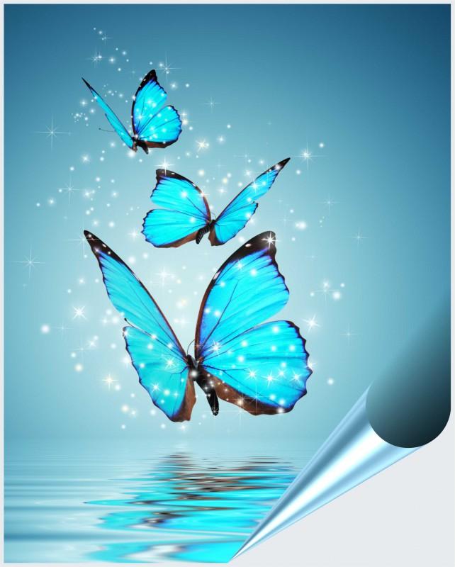 Fliesenaufkleber motiv butterfly 20x25 cm for Fliesenaufkleber 20x25