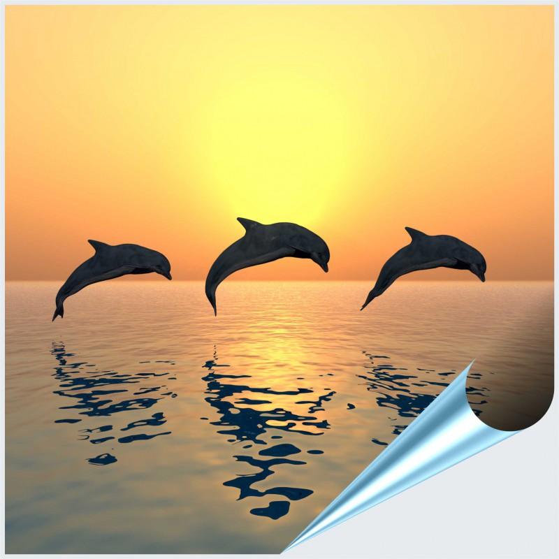 Fliesenaufkleber Motiv Jumping Dolphins 10x10 cm – Bild 1